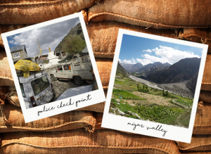 Trekking in Himachal Pradesh: my travel journey through Miyar Valley  (1/3)