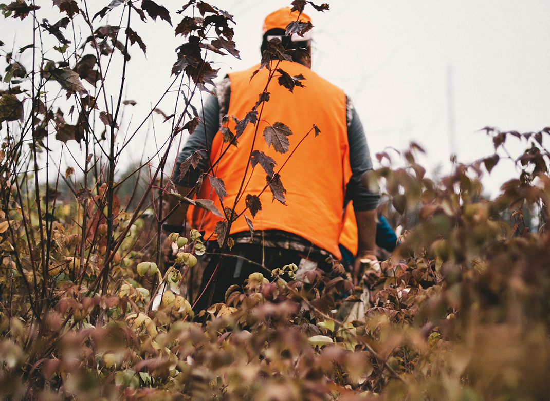 Hunting Season is Open. Five Essential Products for Deer Hunting