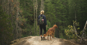 3 Tips for a Successful Hike with Your Dog