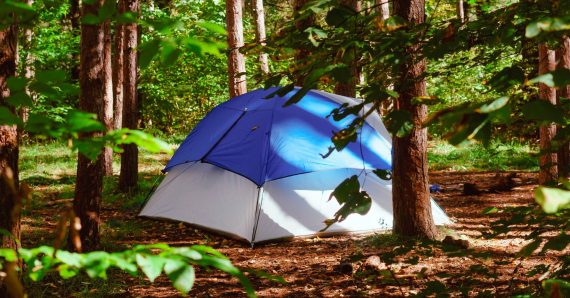 Camping écolo