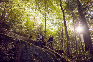 Hiking Boots or Hiking Shoes: How to Make the Right Choice