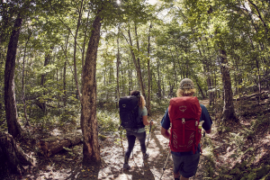 Top 5 Hikes in Quebec to do at Least Once in Your Life