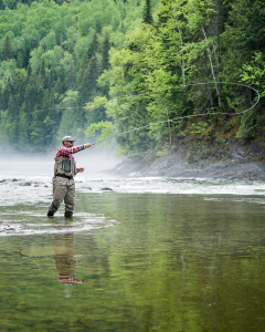 Some facts about salmon fly fishing