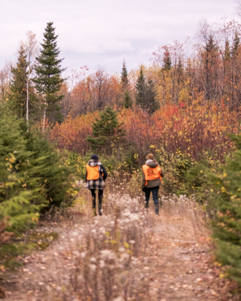 Small game hunting in Des Laurentides Wildlife Reserve